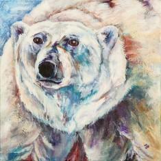 My Polar Muse